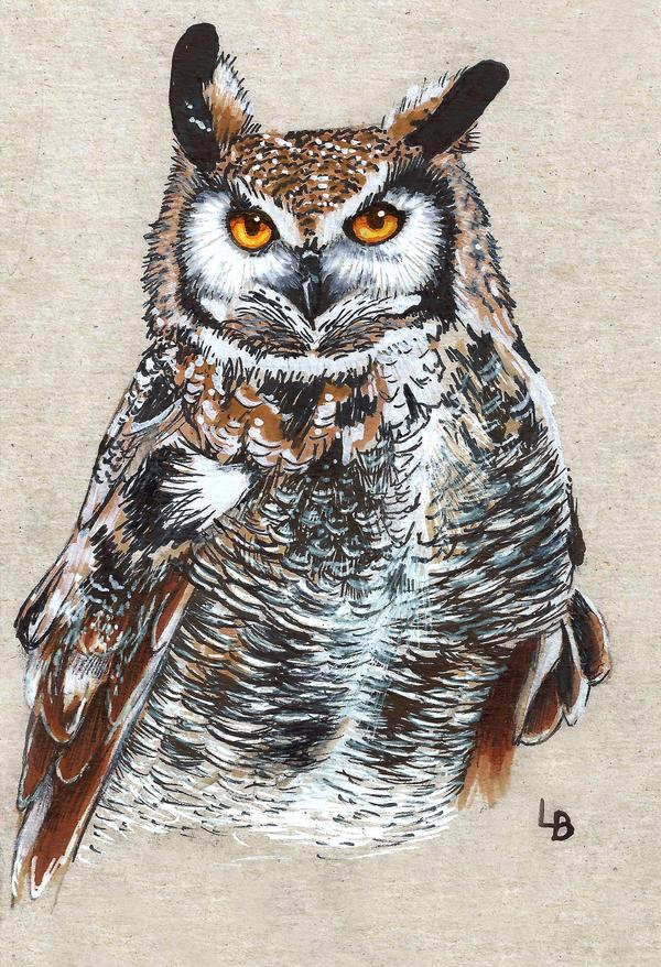 Owl.. by Leftblind