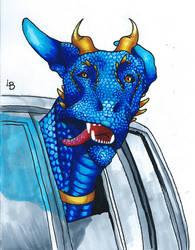Lets take the dragon to a car ride!