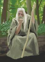Forest wizard sketch by Hopfield