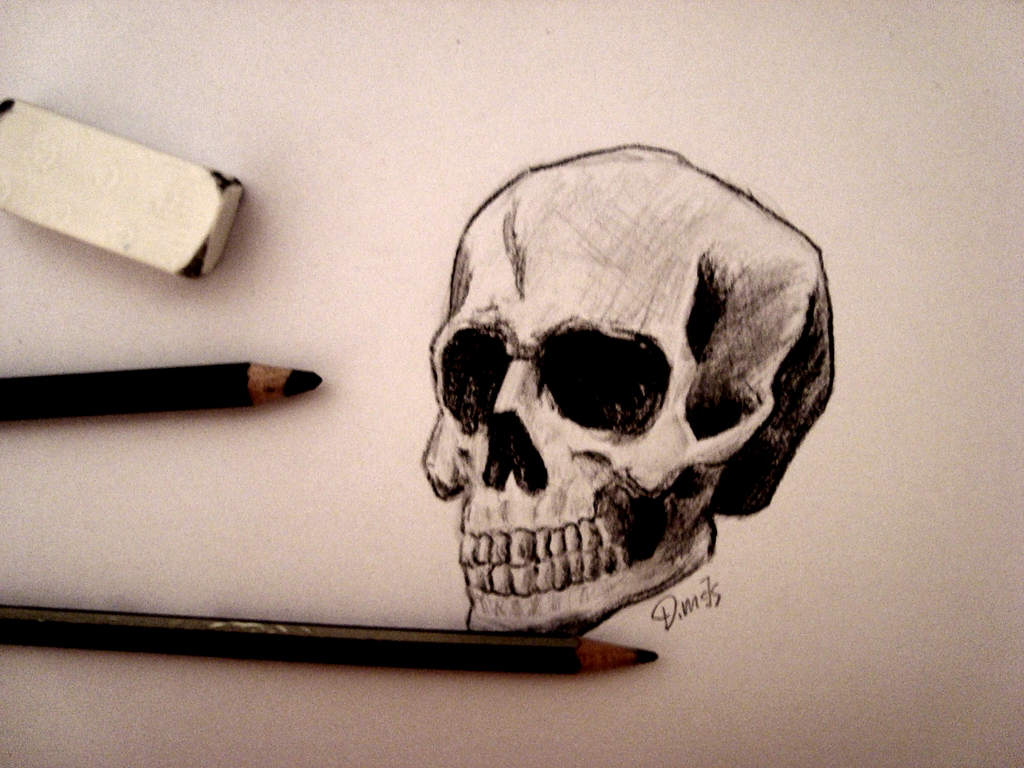 Skull by PorkLord