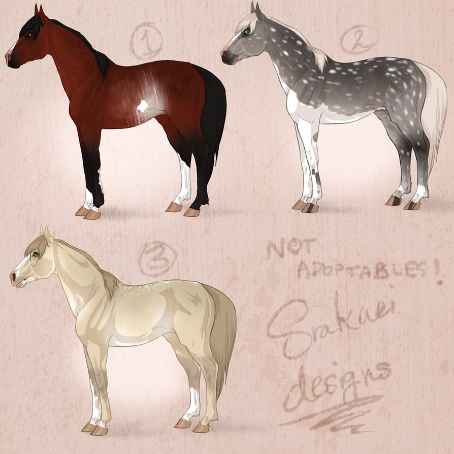 Srakaei designs by noebelle