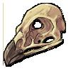 Eagle skull by noebelle