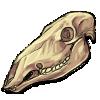 Caribou skull by noebelle