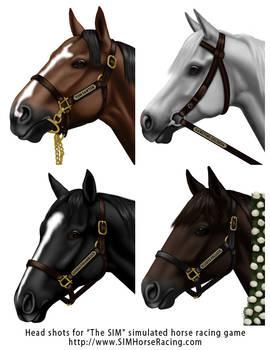 Head shots of horses-Group 110