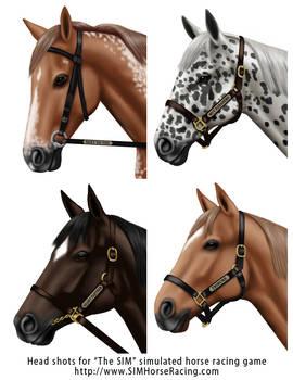 Head shots of horses-Group 112