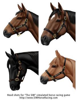 Head shots of horses-Group 114