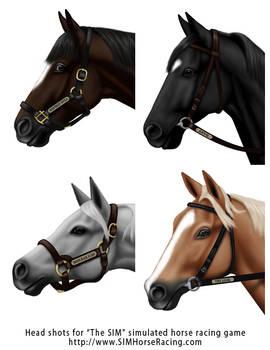 Head shots of horses-Group 116