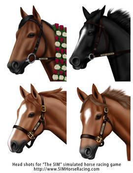 Head shots of horses-Group 120