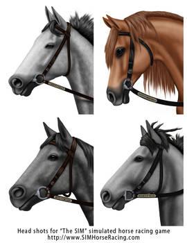 Head shots of horses-Group 123