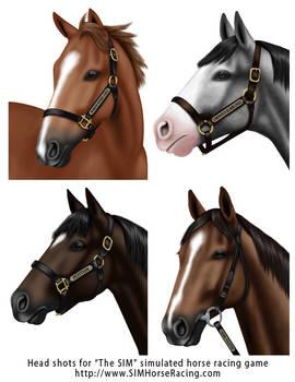 Head shots of horses-Group 128