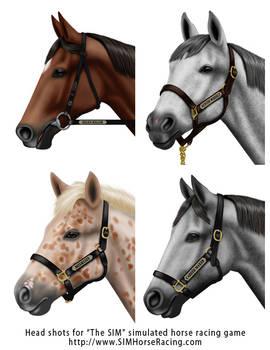 Head shots of horses-Group 130