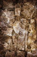Texture - Distressed Paving Stones (Brown) by humphreyhippo