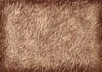 Texture - Crumpled Paper #2 (Brown)