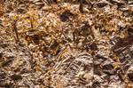 Texture  - Gold Leaf