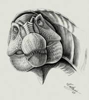 Spinosaurus aegyptiacus by liliensternus
