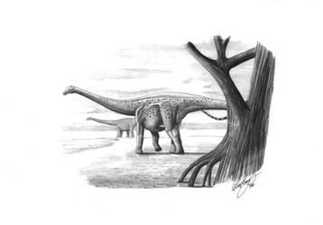 Magyarosaurus dacus by liliensternus