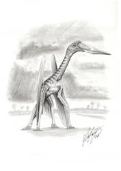 New Azdarchid Pterosaur