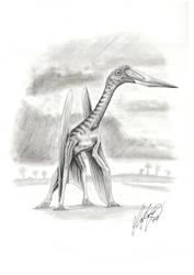New Azdarchid Pterosaur by liliensternus