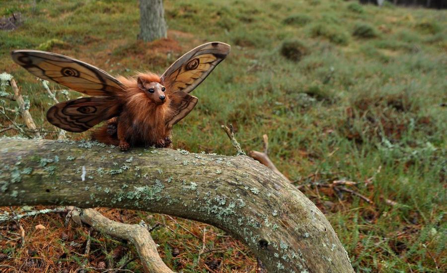 Emperor Moth Griffon by Magweno