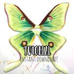 Moth Wing Tutorial