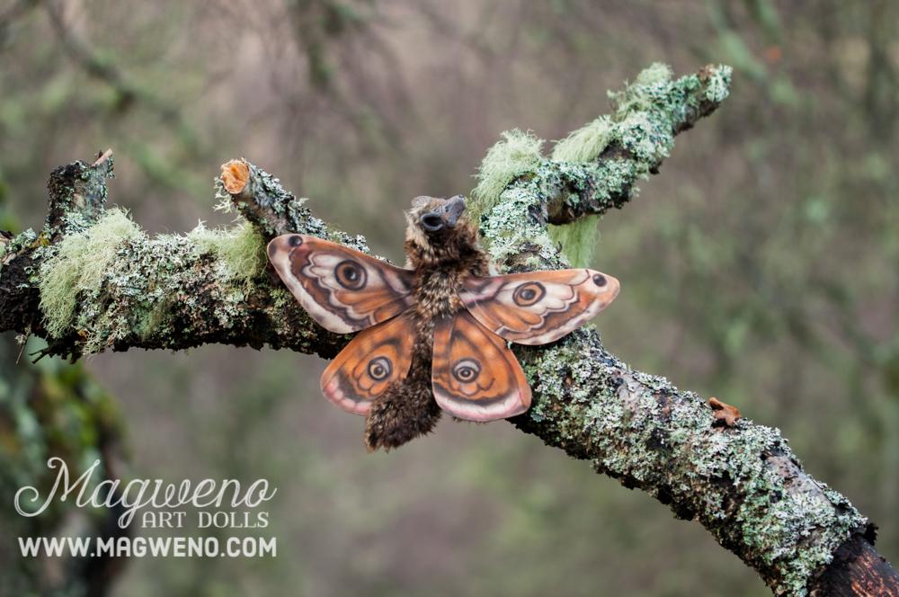 Mothfox by Magweno