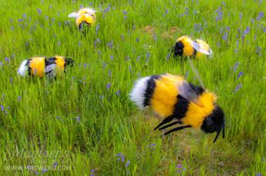 HUGE BEES
