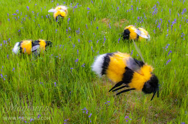 HUGE BEES by Magweno