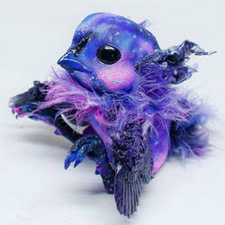 Galaxy phoenix