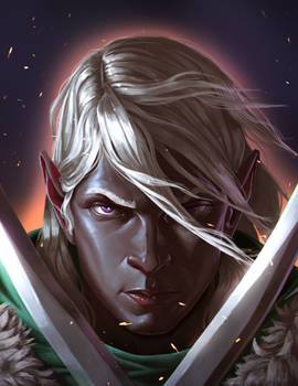 Drizzt Do'Urden's Guide to Combat cover art