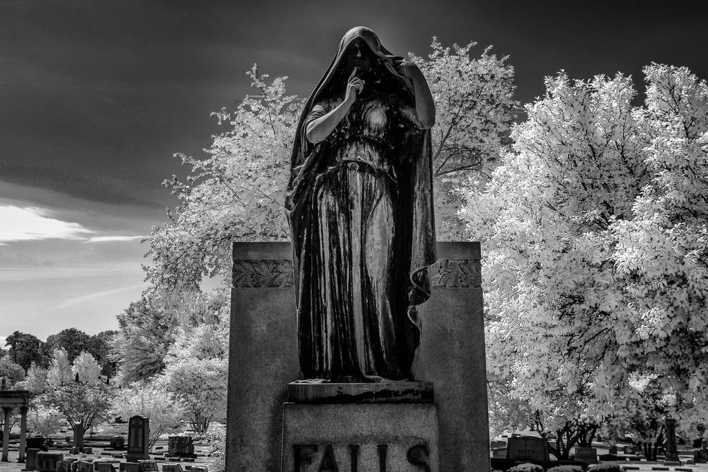 Elmwood Falls by nigel3