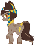 COM: Anubis
