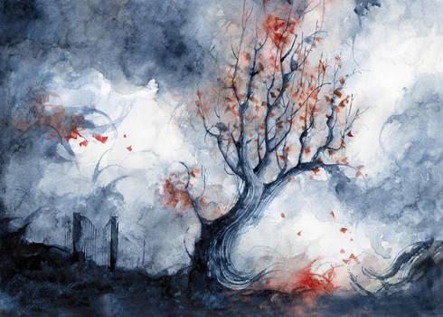 Winter by Daniele-Serra