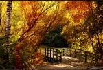 Bridge of transition by Patual
