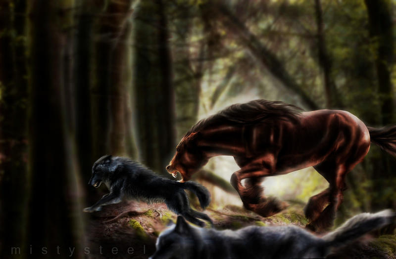 Hunter by mistysteel
