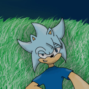 IcerTheHedgehog293's Profile Picture