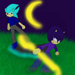 Siblings of Hatred against Hope (Fang vs Luna) by IcerTheHedgehog293