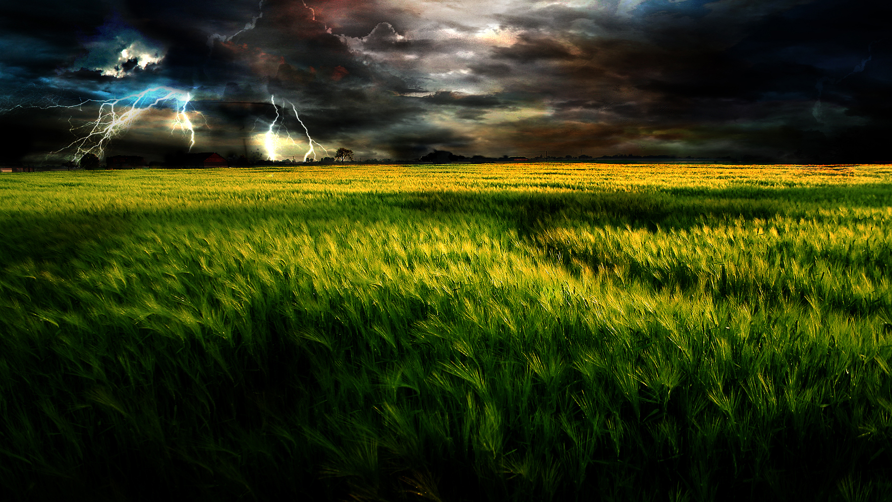 Best Wallpaper Night Grass - grass_field_by_lethalwire  Graphic-723655.jpg
