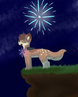 You Are A Firework by XanderGirl96