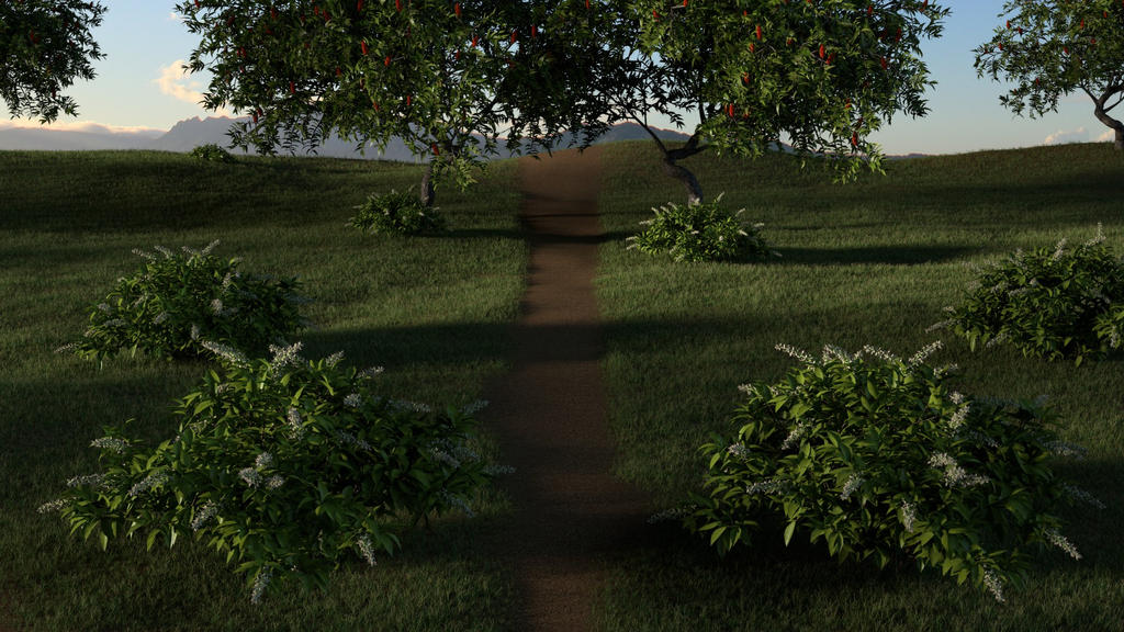 Dirt Path 2 by FTMPro