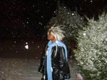 Xemnas Winter Wonderland
