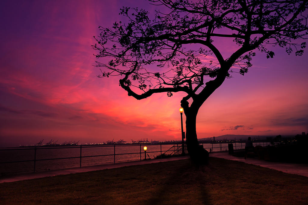 California Sunset by EYADSTUDIO
