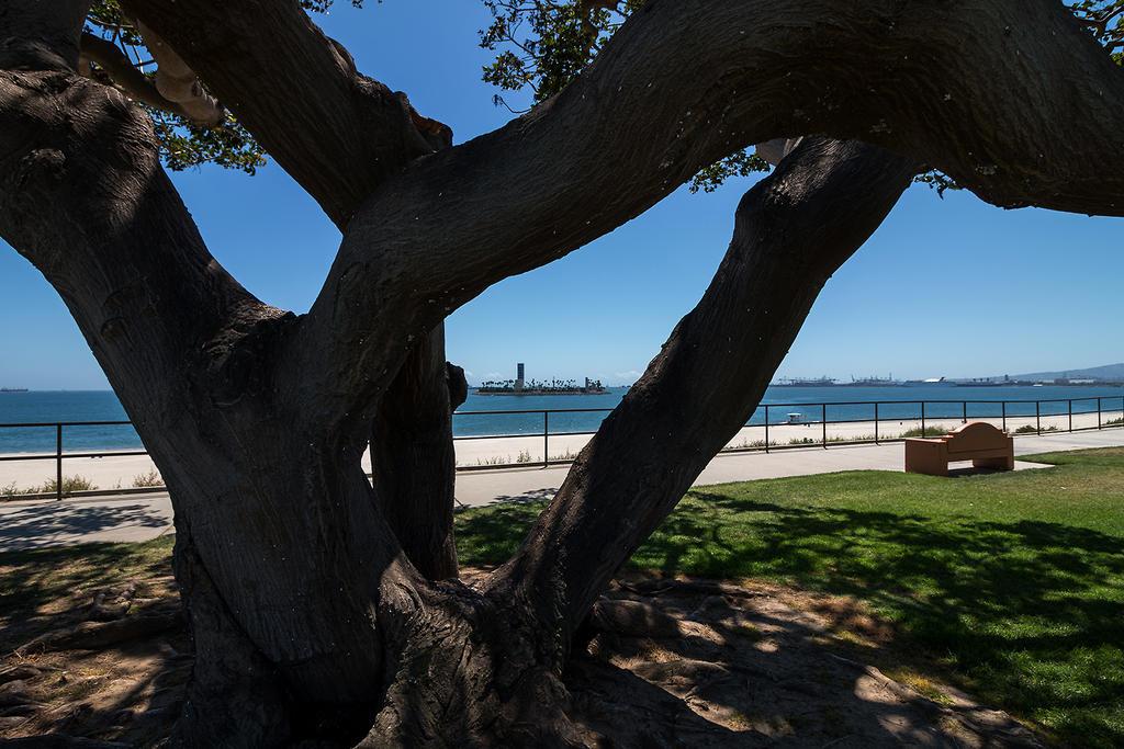 Long Beach, CA by EYADSTUDIO