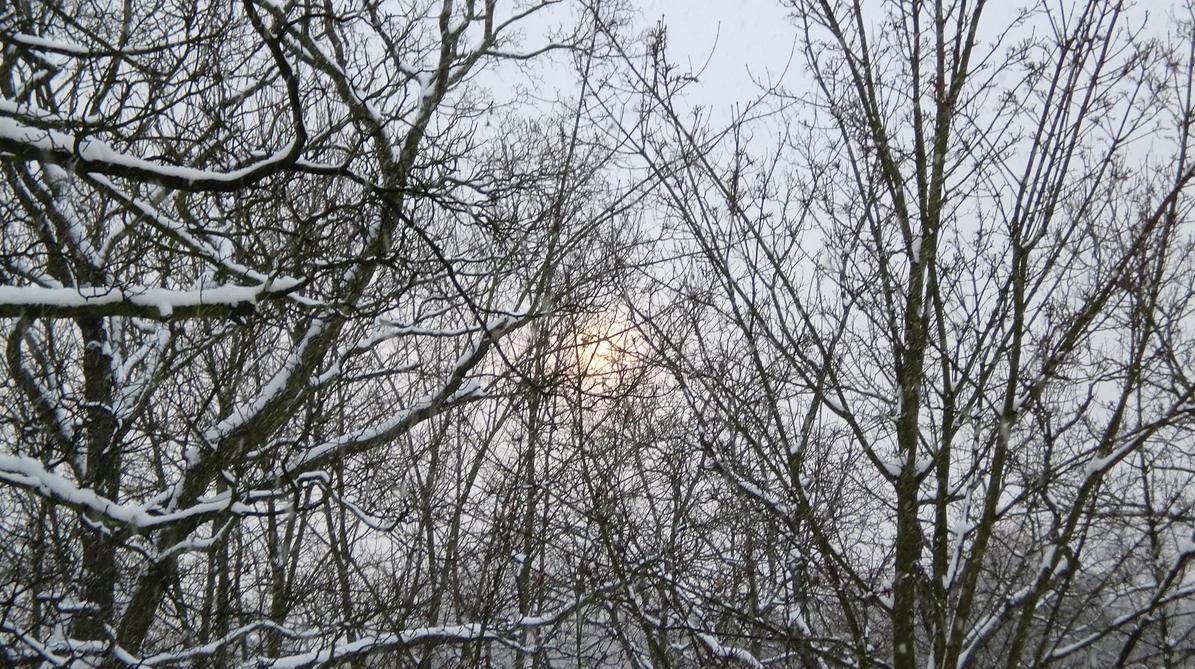 On Tour In Winter 0001 by Sternenmaschinebine