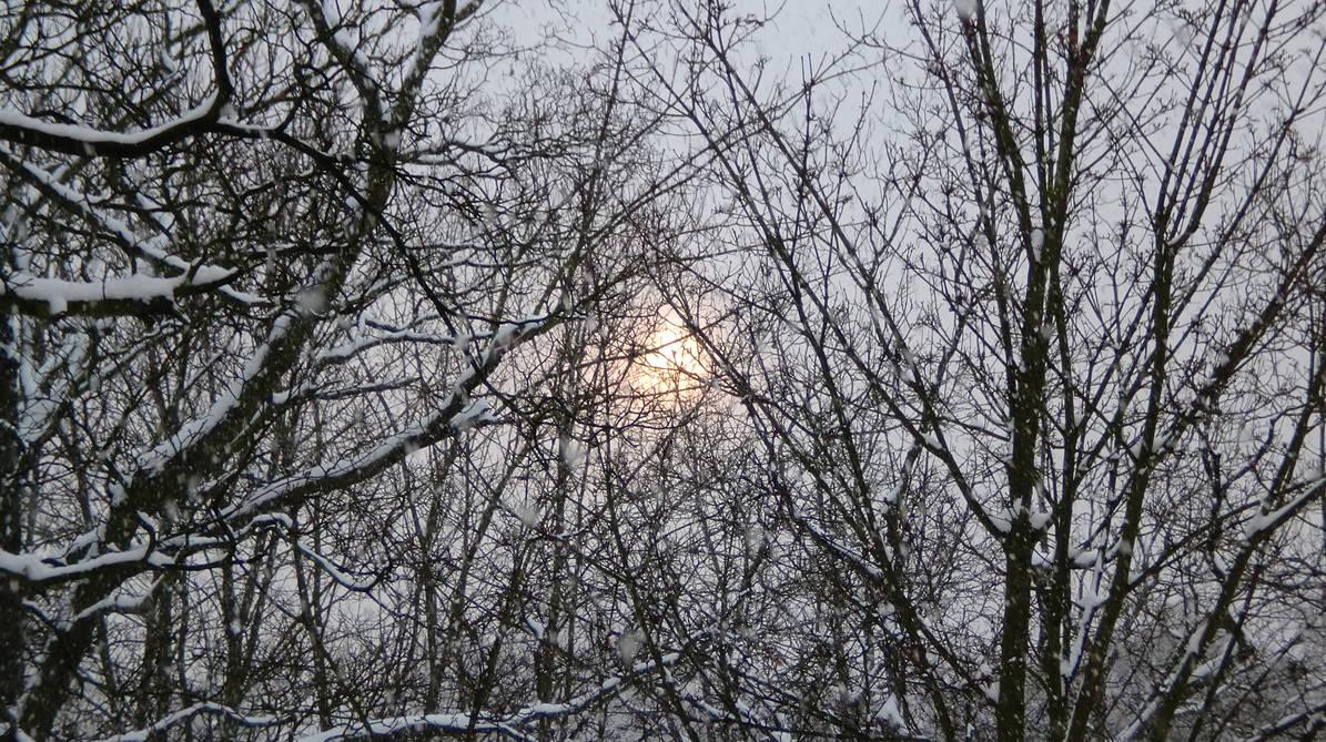 On Tour In Winter 0002 by Sternenmaschinebine