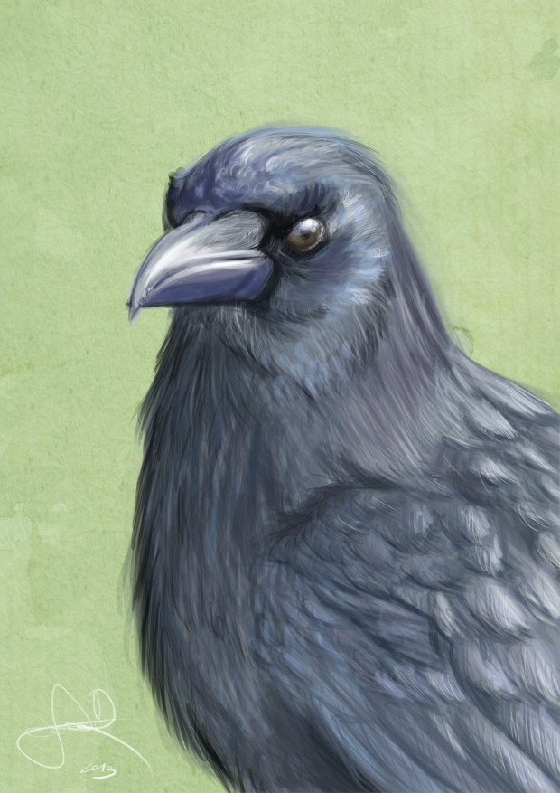 Raven by SabreWing