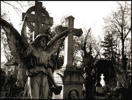 Angel II by agathodaimon89