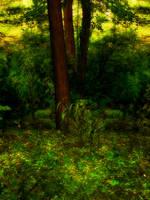 Premade Background 3 by AelarethElennar