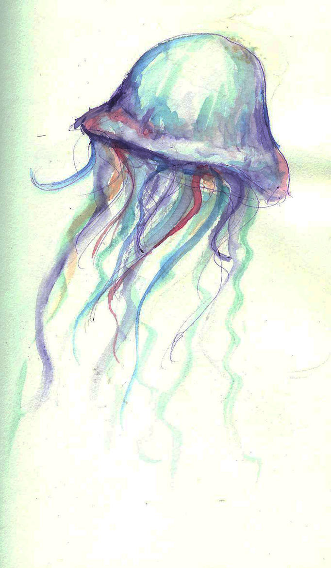 Random Jellyfish by RainingCranes