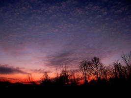 WINTER SKYS 09 NO.11 by RLCLOUGH