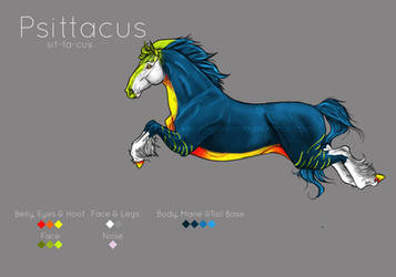 Psitticus ::: Reference Sheet by ellidyrr